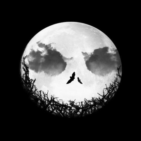 Jack-nightmare-before-christmas-32561814-499-499